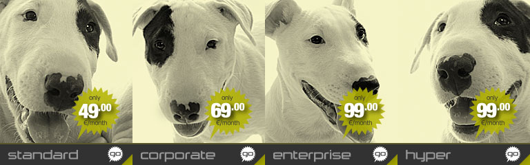 Image banner for the Corporate dedicated server offered by Hostdog