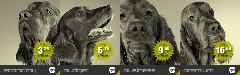 Banner image for the Economy shared webhosting plan by Hostdog