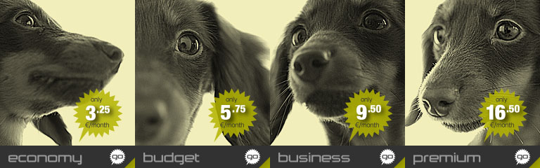 Banner image for the SSD-Economy shared webhosting plan by Hostdog