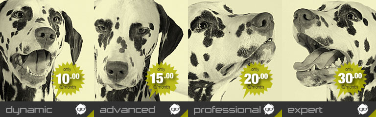 Banner image for the Professional KVM VPS plan by Hostdog