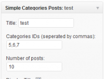 Simple SEO Categories Posts widget Screenshot