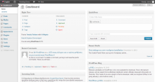 WordPress control panel dashboard page